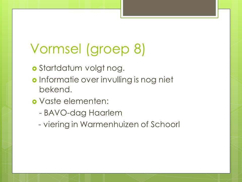 Vormsel (groep 8)  Startdatum volgt nog.  Informatie over invulling is nog niet bekend.  Vaste elementen: - BAVO-dag Haarlem - viering in Warmenhui