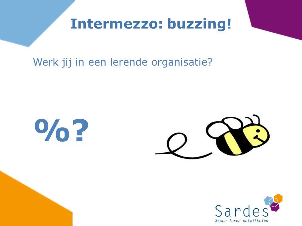 Werk jij in een lerende organisatie? %? Intermezzo: buzzing!