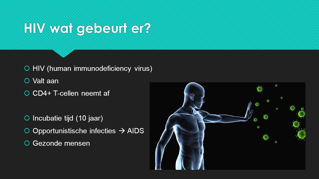 HIV wat gebeurt er?  HIV (human immunodeficiency virus)  Valt aan  CD4+ T-cellen neemt af  Incubatie tijd (10 jaar)  Opportunistische infecties 