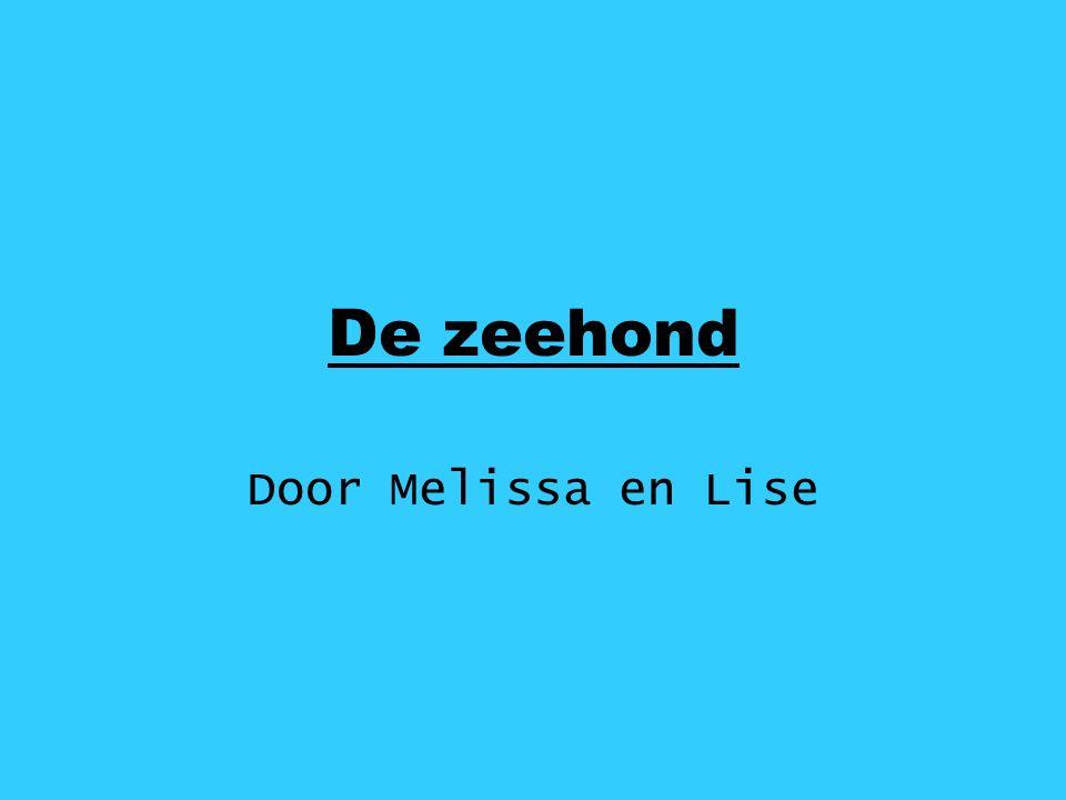 Door Melissa en Lise De zeehond