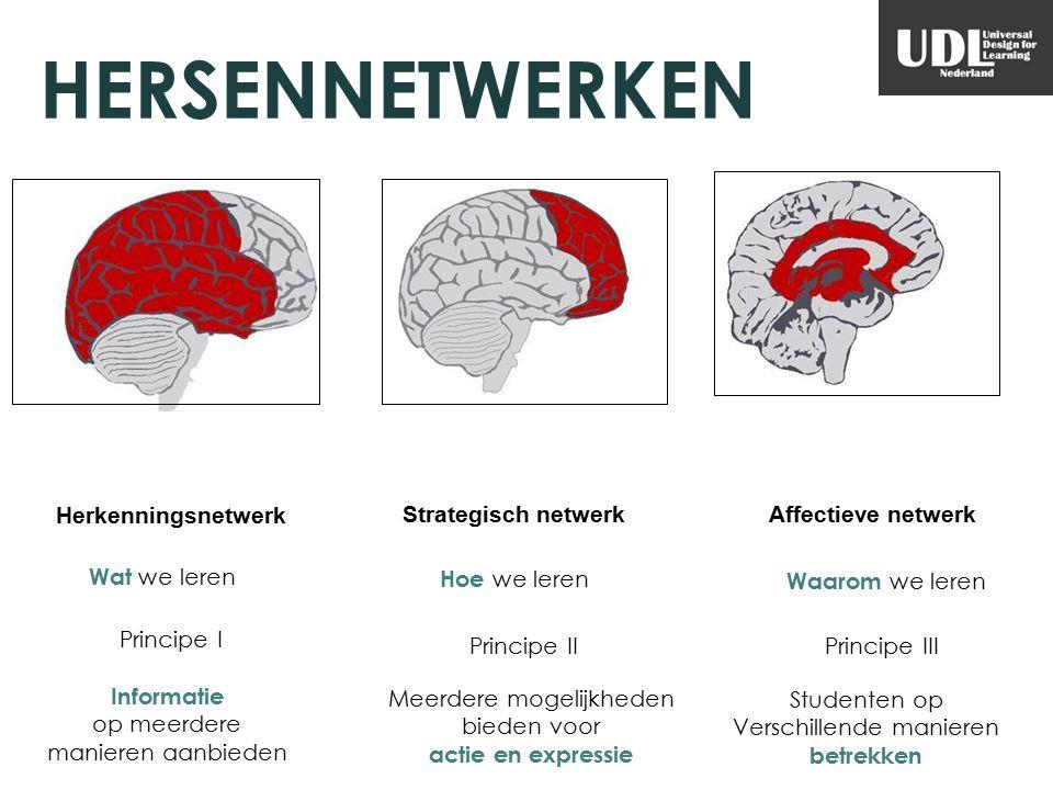 HERSENNETWERKEN Herkenningsnetwerk Strategisch netwerkAffectieve netwerk Waarom we leren Wat we leren Hoe we leren Principe I Principe IIPrincipe III