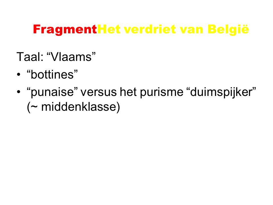 """Voorbeeld: Het verdriet van België Taal: """"Vlaams"""" """"bottines"""" """"punaise"""" versus het purisme """"duimspijker"""" (~ middenklasse) FragmentHet verdriet van Belg"""