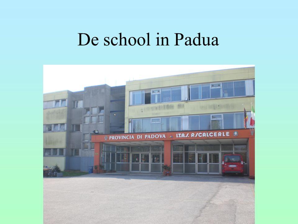 De school in Padua 16
