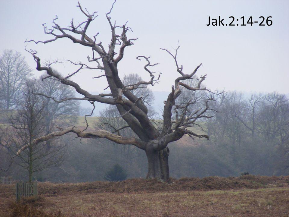 Jak.2:14-26 14