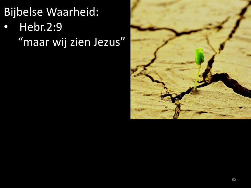 """Bijbelse Waarheid: Hebr.2:9 """"maar wij zien Jezus"""" 85"""