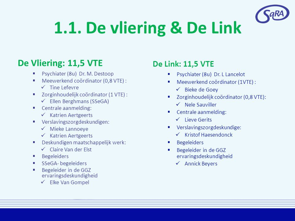 1.1. De vliering & De Link De Vliering: 11,5 VTE  Psychiater (8u) Dr. M. Destoop  Meewerkend coördinator (0,8 VTE) : Tine Lefevre  Zorginhoudelijk