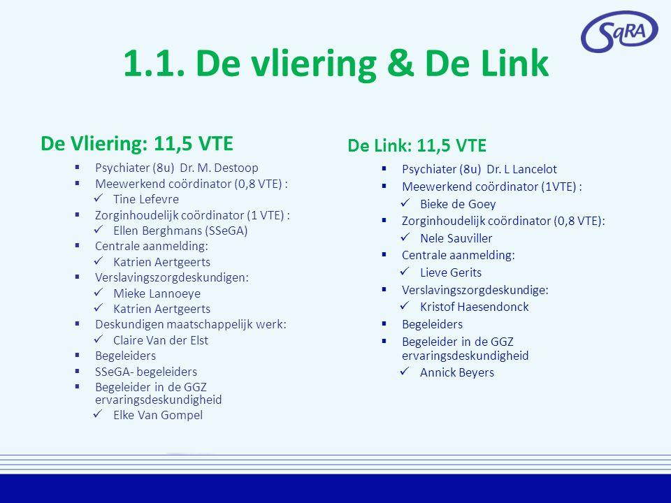 1.1.De vliering & De Link De Vliering: 11,5 VTE  Psychiater (8u) Dr.