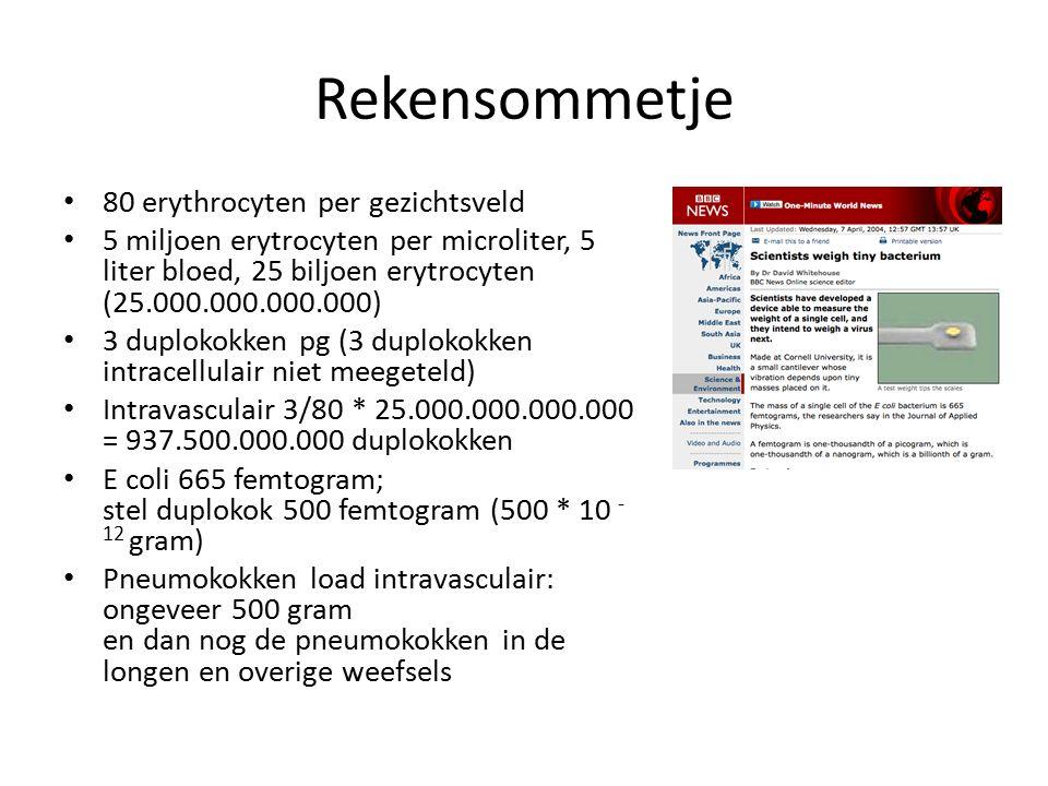 Rekensommetje 80 erythrocyten per gezichtsveld 5 miljoen erytrocyten per microliter, 5 liter bloed, 25 biljoen erytrocyten (25.000.000.000.000) 3 dupl