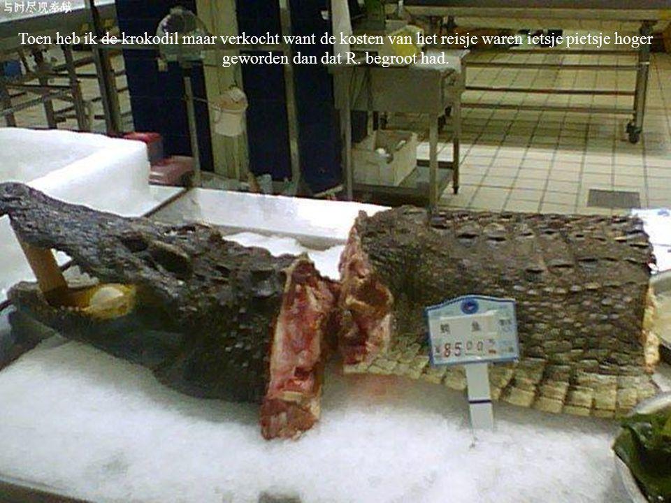 Toen heb ik de krokodil maar verkocht want de kosten van het reisje waren ietsje pietsje hoger geworden dan dat R.