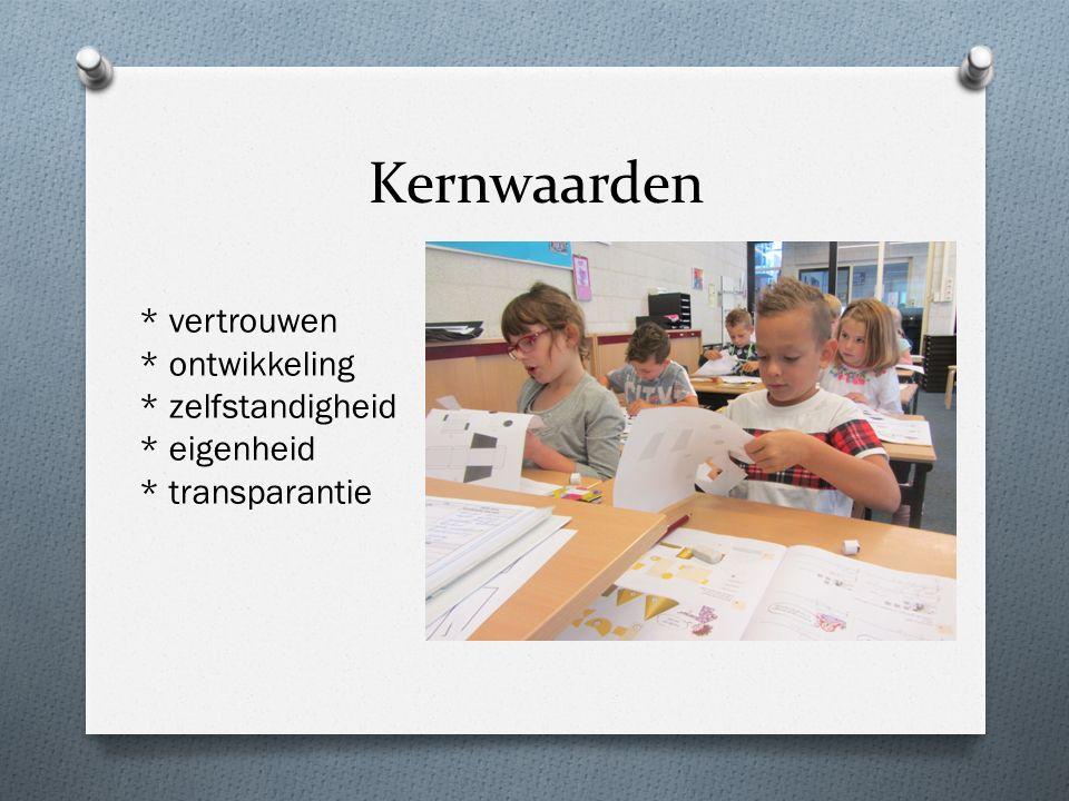 Rapport - November gesprek leerkracht-ouder (geen rapport) - februari 1e rapport en gesprek - Juli 2e rapport en een gesprek op aanvraag - Opmerkingen alleen indien nodig.