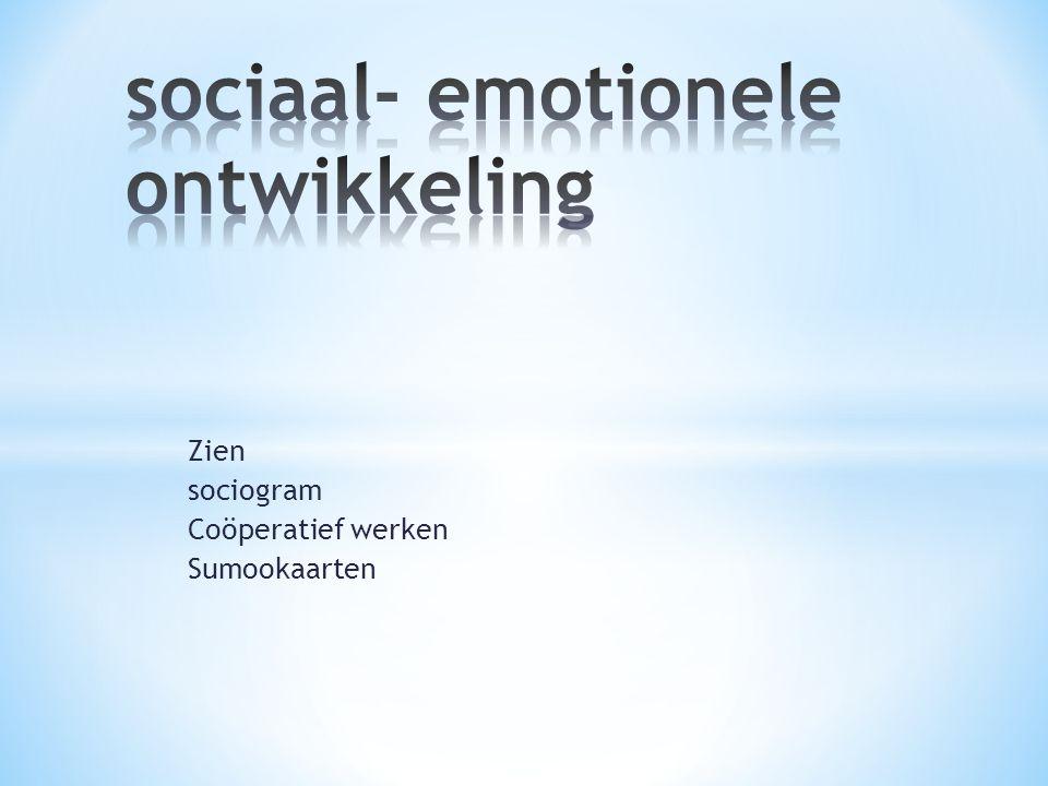 Zien sociogram Coöperatief werken Sumookaarten