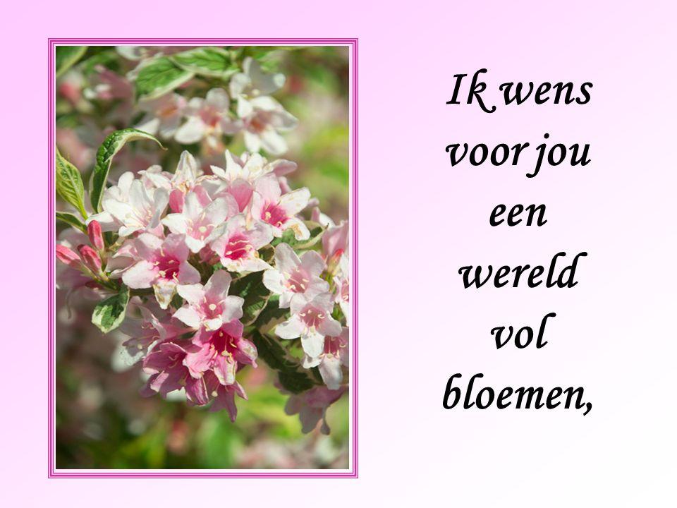 Ik wens voor jou een wereld vol bloemen,