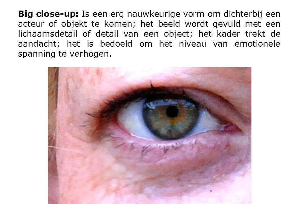 Big close-up: Is een erg nauwkeurige vorm om dichterbij een acteur of objekt te komen; het beeld wordt gevuld met een lichaamsdetail of detail van een object; het kader trekt de aandacht; het is bedoeld om het niveau van emotionele spanning te verhogen.