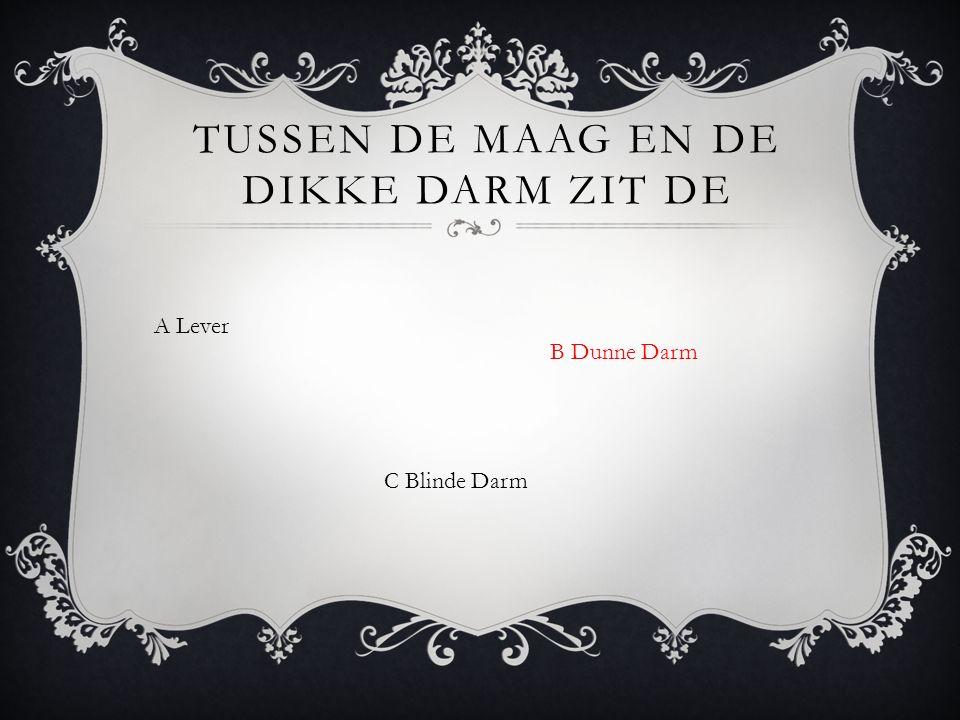 A Lever B Dunne Darm TUSSEN DE MAAG EN DE DIKKE DARM ZIT DE C Blinde Darm