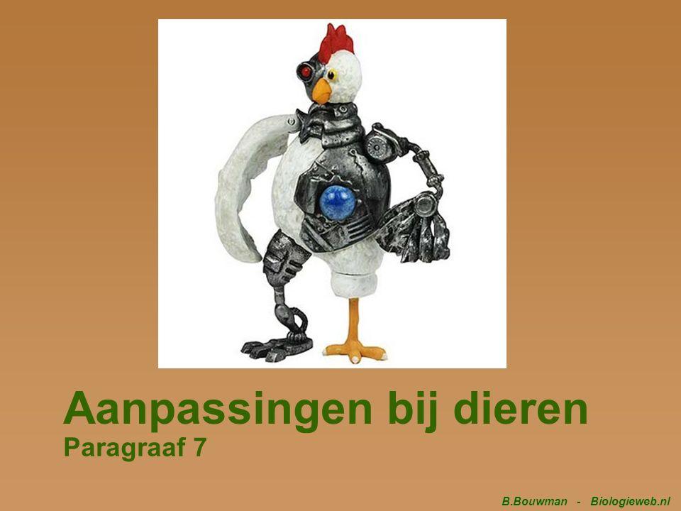 Aanpassingen bij dieren Paragraaf 7 B.Bouwman - Biologieweb.nl