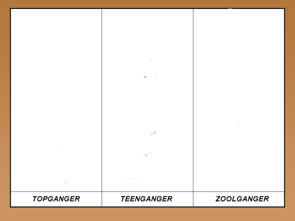 ELANDWOLFMENS TOPGANGERTEENGANGERZOOLGANGER