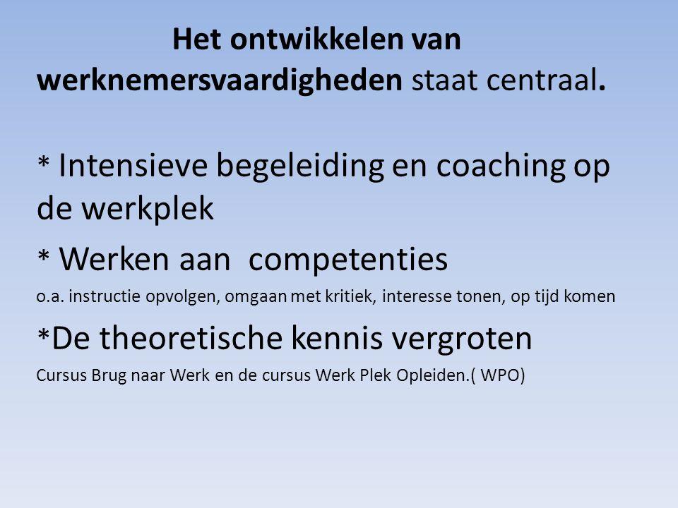 Het ontwikkelen van werknemersvaardigheden staat centraal. * Intensieve begeleiding en coaching op de werkplek * Werken aan competenties o.a. instruct