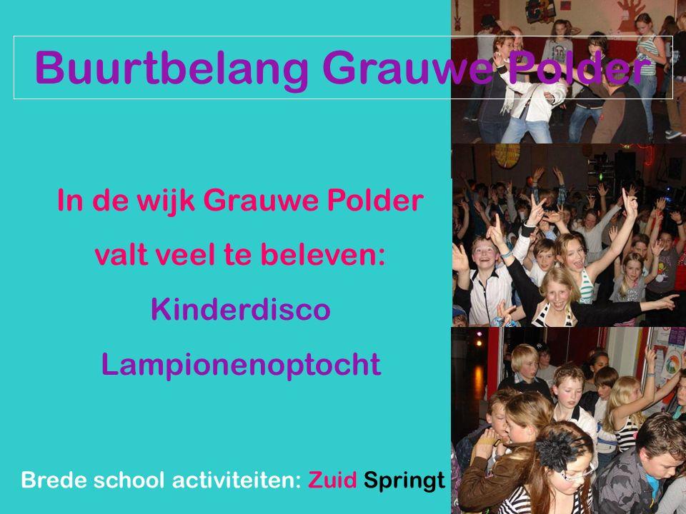 Buurtbelang Grauwe Polder In de wijk Grauwe Polder valt veel te beleven: Kinderdisco Lampionenoptocht Brede school activiteiten: Zuid Springt Eruit