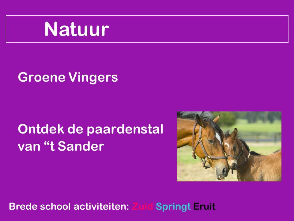 """Natuur Groene Vingers Ontdek de paardenstal van """"t Sander Brede school activiteiten: Zuid Springt Eruit"""