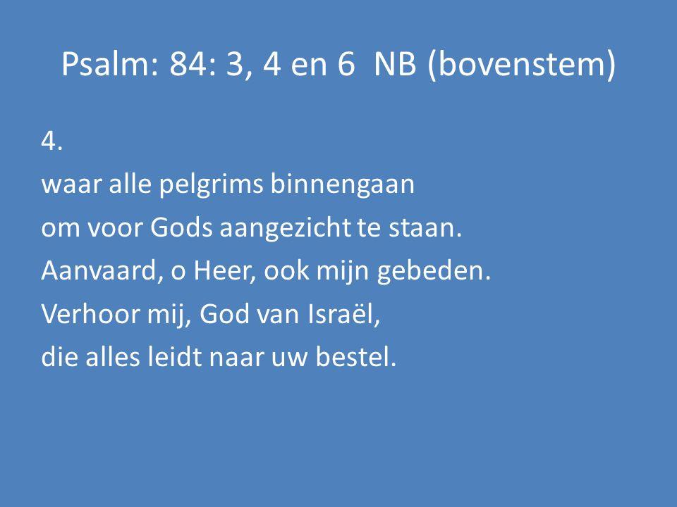 4. waar alle pelgrims binnengaan om voor Gods aangezicht te staan.
