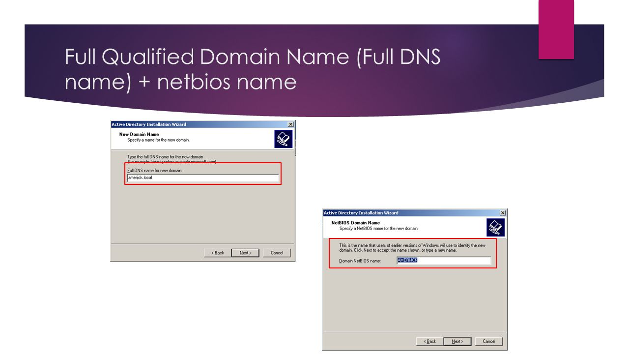 Full Qualified Domain Name (Full DNS name) + netbios name