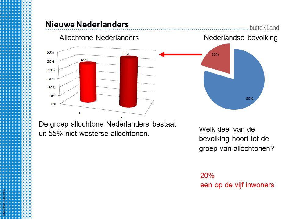 Nieuwe Nederlanders Welk deel van de bevolking hoort tot de groep van allochtonen? 20% een op de vijf inwoners De groep allochtone Nederlanders bestaa