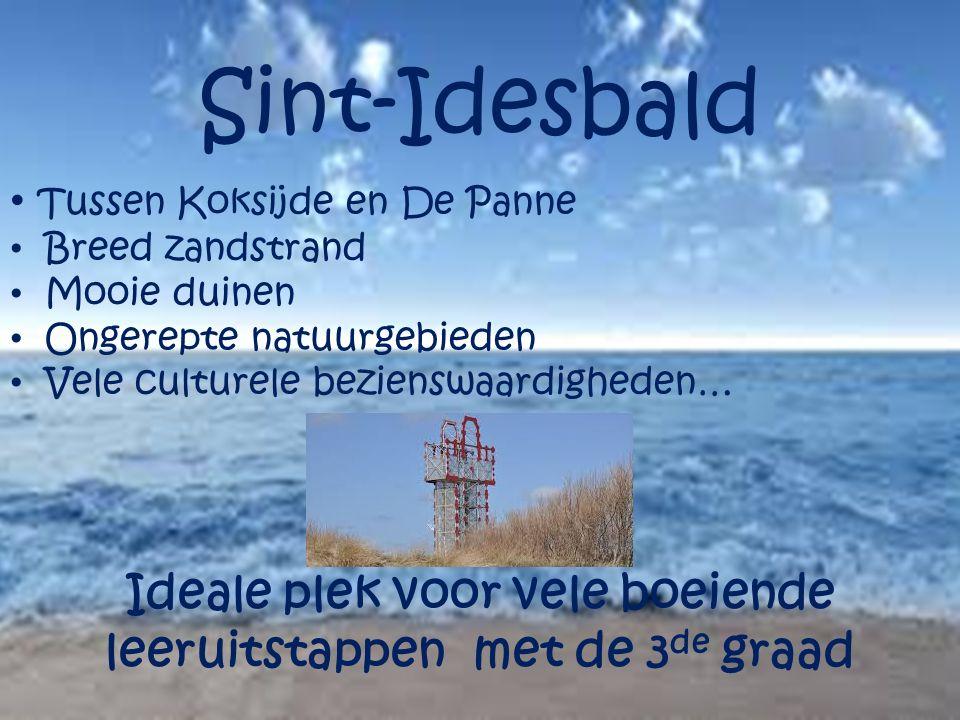 Sint-Idesbald Tussen Koksijde en De Panne Breed zandstrand Mooie duinen Ongerepte natuurgebieden Vele culturele bezienswaardigheden… Ideale plek voor