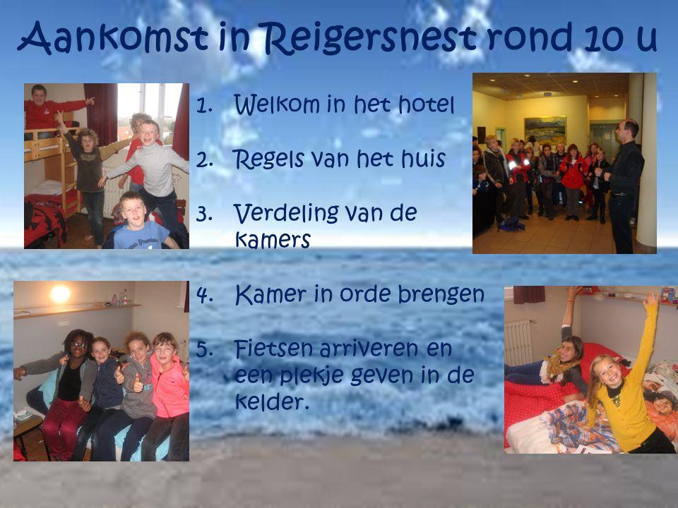 Aankomst in Reigersnest rond 10 u 1.Welkom in het hotel 2.Regels van het huis 3.Verdeling van de kamers 4.Kamer in orde brengen 5.Fietsen arriveren en