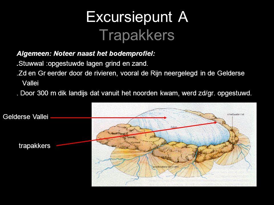 Excursiepunt A Trapakkers Algemeen: Noteer naast het bodemprofiel:.Stuwwal :opgestuwde lagen grind en zand..Zd en Gr eerder door de rivieren, vooral de Rijn neergelegd in de Gelderse Vallei.