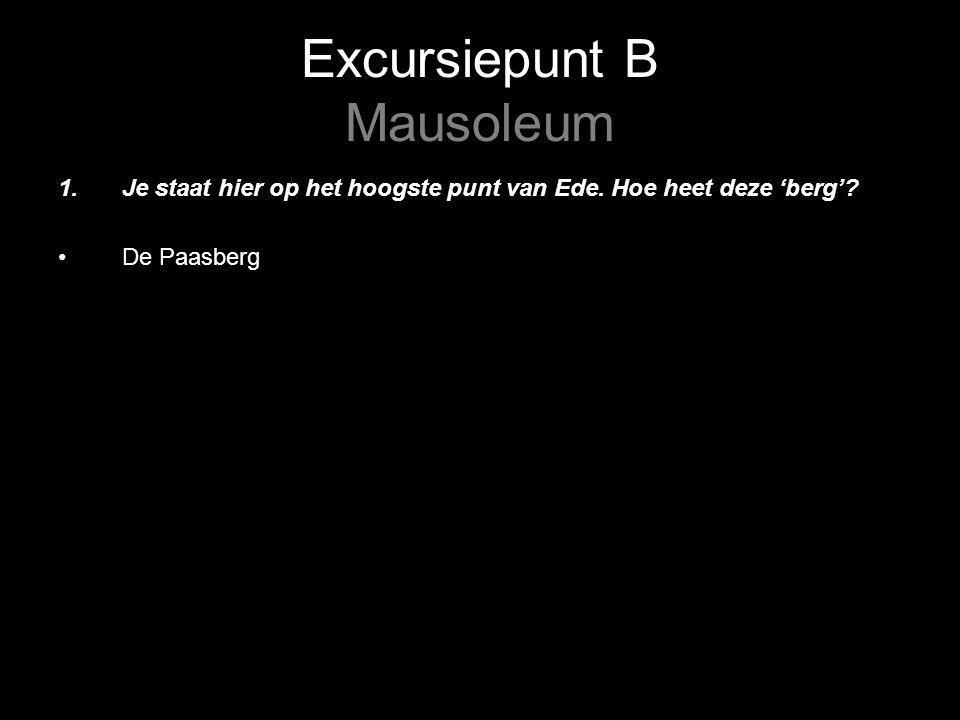 Excursiepunt B Mausoleum 2.Wat valt op aan de sterfdata van de gevallenen.