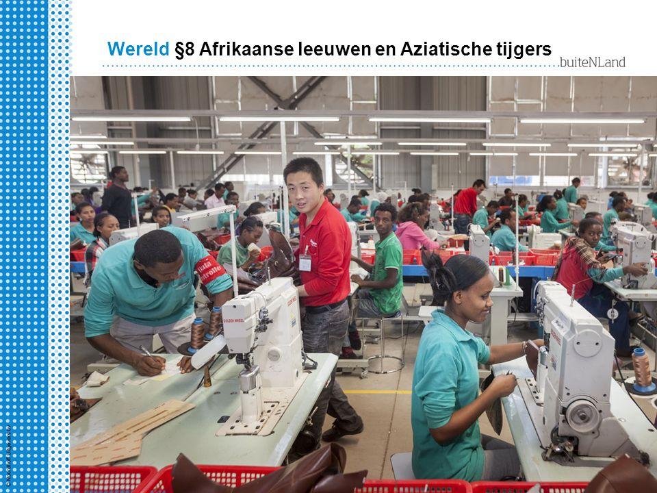 Wereld §8 Afrikaanse leeuwen en Aziatische tijgers