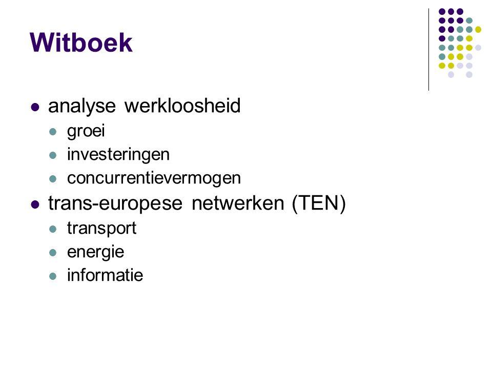 Witboek analyse werkloosheid groei investeringen concurrentievermogen trans-europese netwerken (TEN) transport energie informatie