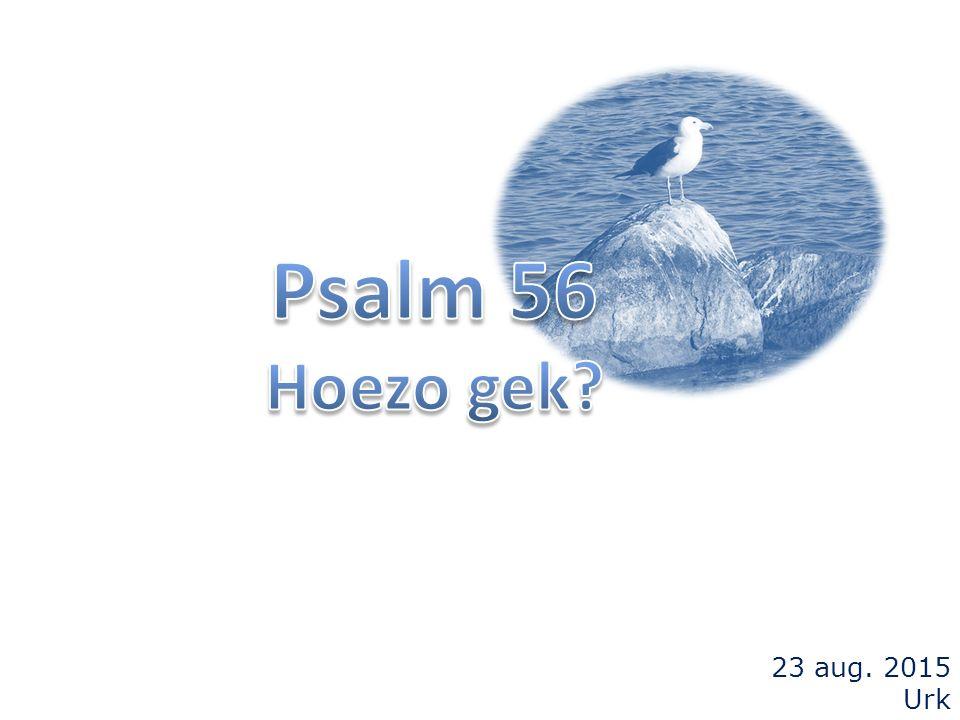 Psalm 56 3 wie mij benauwen, vertrappen mij de ganse dag, ja velen zijn het, die mij uit de hoogte bestrijden.
