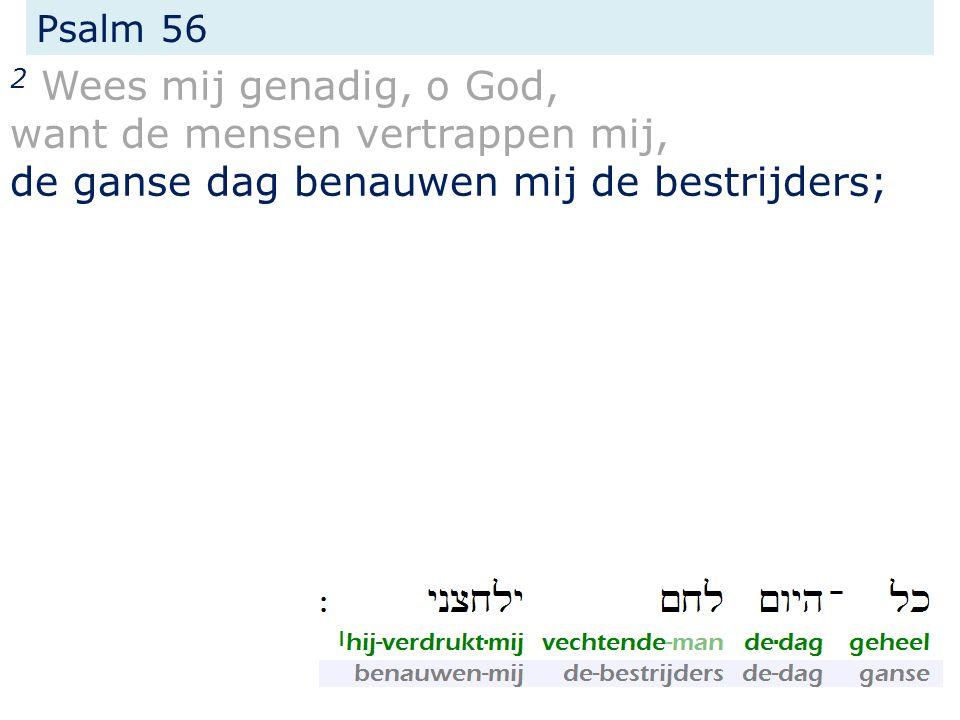 Psalm 56 2 Wees mij genadig, o God, want de mensen vertrappen mij, de ganse dag benauwen mij de bestrijders;