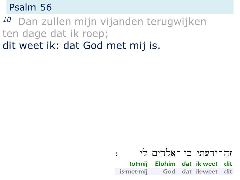 Psalm 56 10 Dan zullen mijn vijanden terugwijken ten dage dat ik roep; dit weet ik: dat God met mij is.