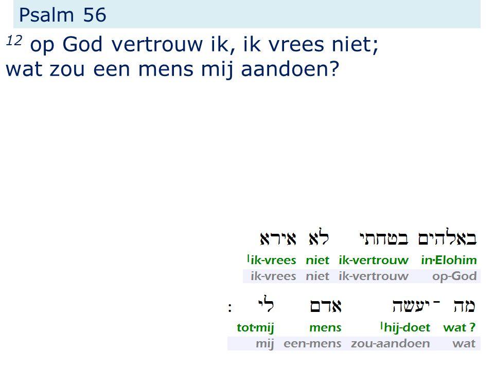 Psalm 56 12 op God vertrouw ik, ik vrees niet; wat zou een mens mij aandoen