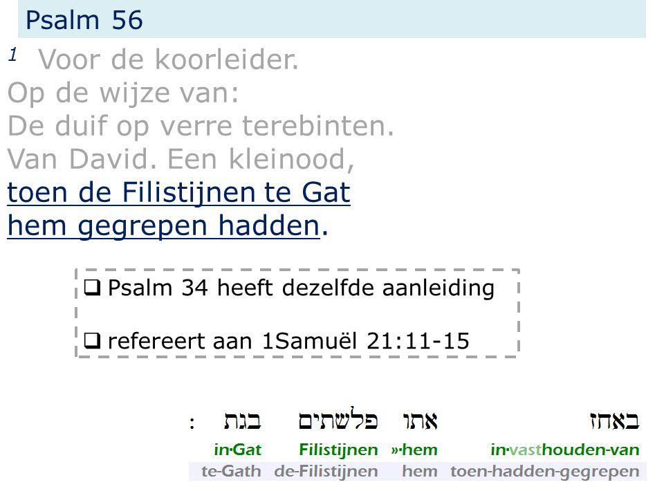 Psalm 56 2 Wees mij genadig, o God, want de mensen vertrappen mij, de ganse dag benauwen mij de bestrijders; lett.