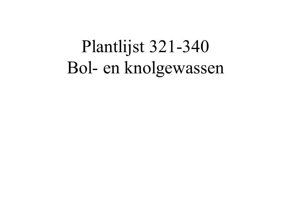 Plantlijst 321-340 Bol- en knolgewassen