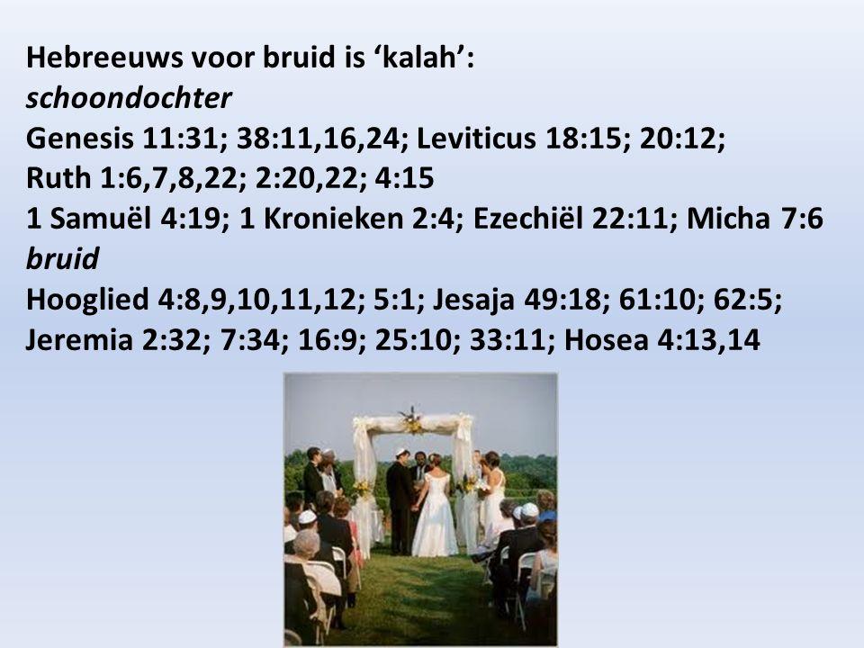 Hebreeuws voor bruid is 'kalah': schoondochter Genesis 11:31; 38:11,16,24; Leviticus 18:15; 20:12; Ruth 1:6,7,8,22; 2:20,22; 4:15 1 Samuël 4:19; 1 Kro