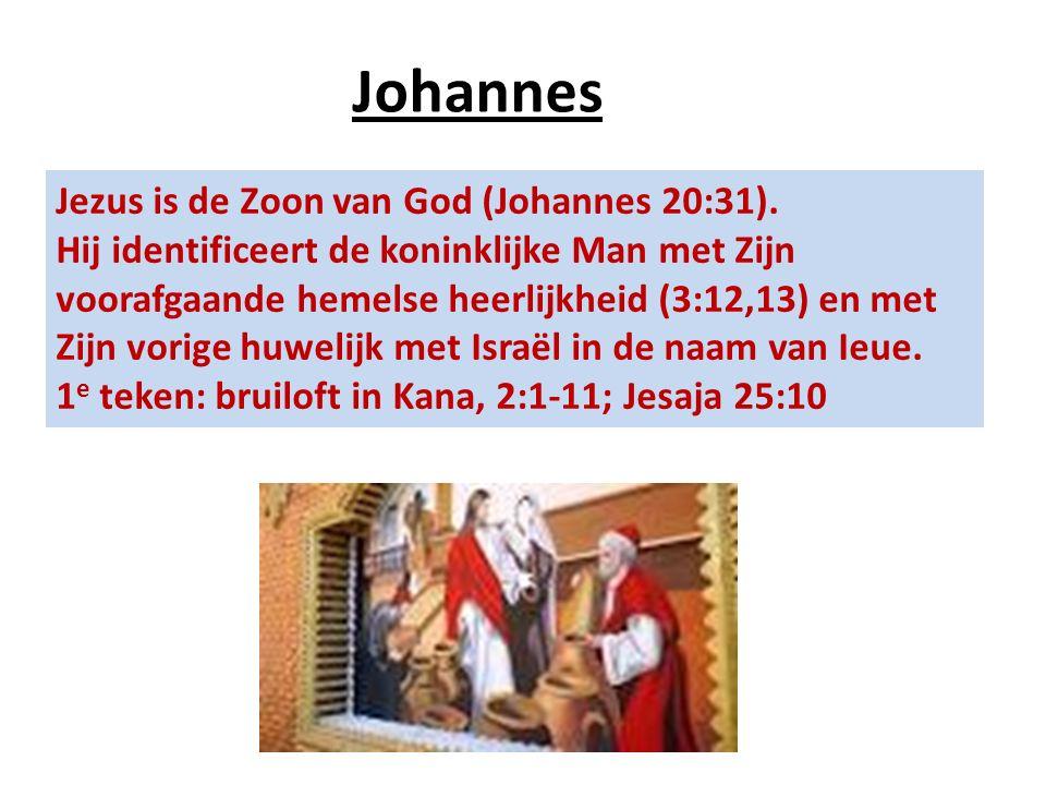 Jezus is de Zoon van God (Johannes 20:31). Hij identificeert de koninklijke Man met Zijn voorafgaande hemelse heerlijkheid (3:12,13) en met Zijn vorig