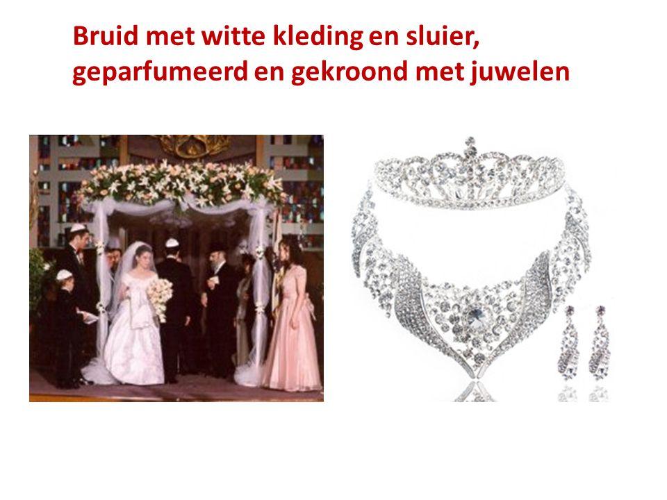 Bruid met witte kleding en sluier, geparfumeerd en gekroond met juwelen