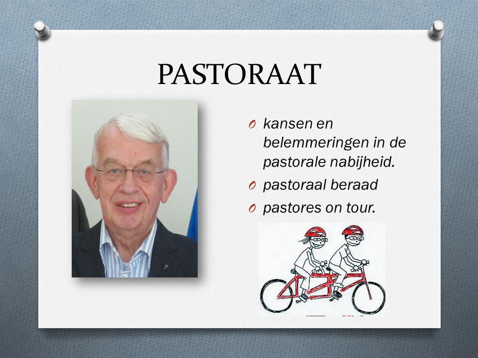 PASTORAAT O kansen en belemmeringen in de pastorale nabijheid. O pastoraal beraad O pastores on tour.