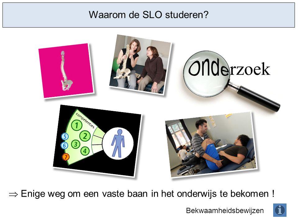 rzoek Waarom de SLO studeren. Enige weg om een vaste baan in het onderwijs te bekomen .