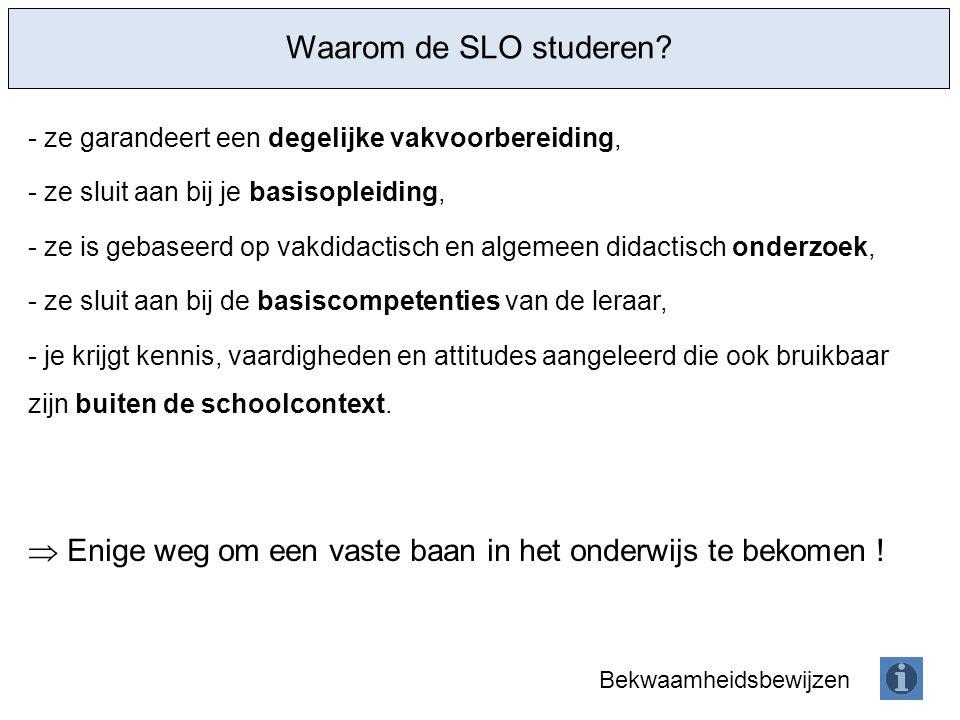 Keuzemogelijkheden binnen het universiteitsbrede OPO Diversiteitsstage (O0A96A, prof.