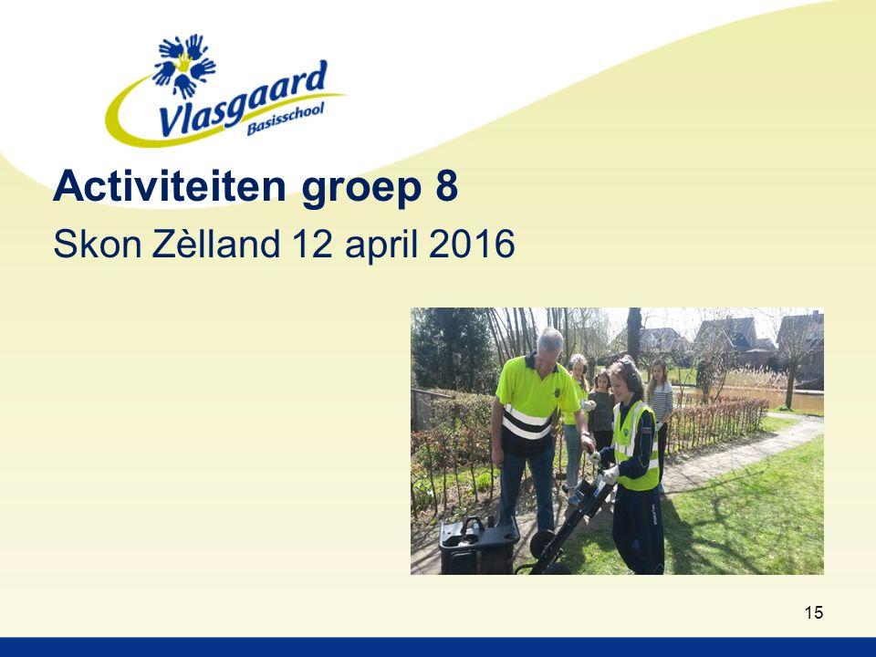 Activiteiten groep 8 Skon Zèlland 12 april 2016 15