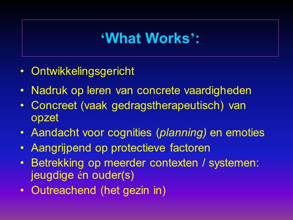 ' What Works ' : Ontwikkelingsgericht Nadruk op leren van concrete vaardigheden Concreet (vaak gedragstherapeutisch) van opzet Aandacht voor cognities (planning) en emoties Aangrijpend op protectieve factoren Betrekking op meerder contexten / systemen: jeugdige é n ouder(s) Outreachend (het gezin in)
