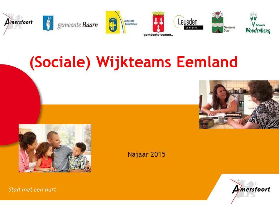 (Sociale) Wijkteams Eemland Najaar 2015