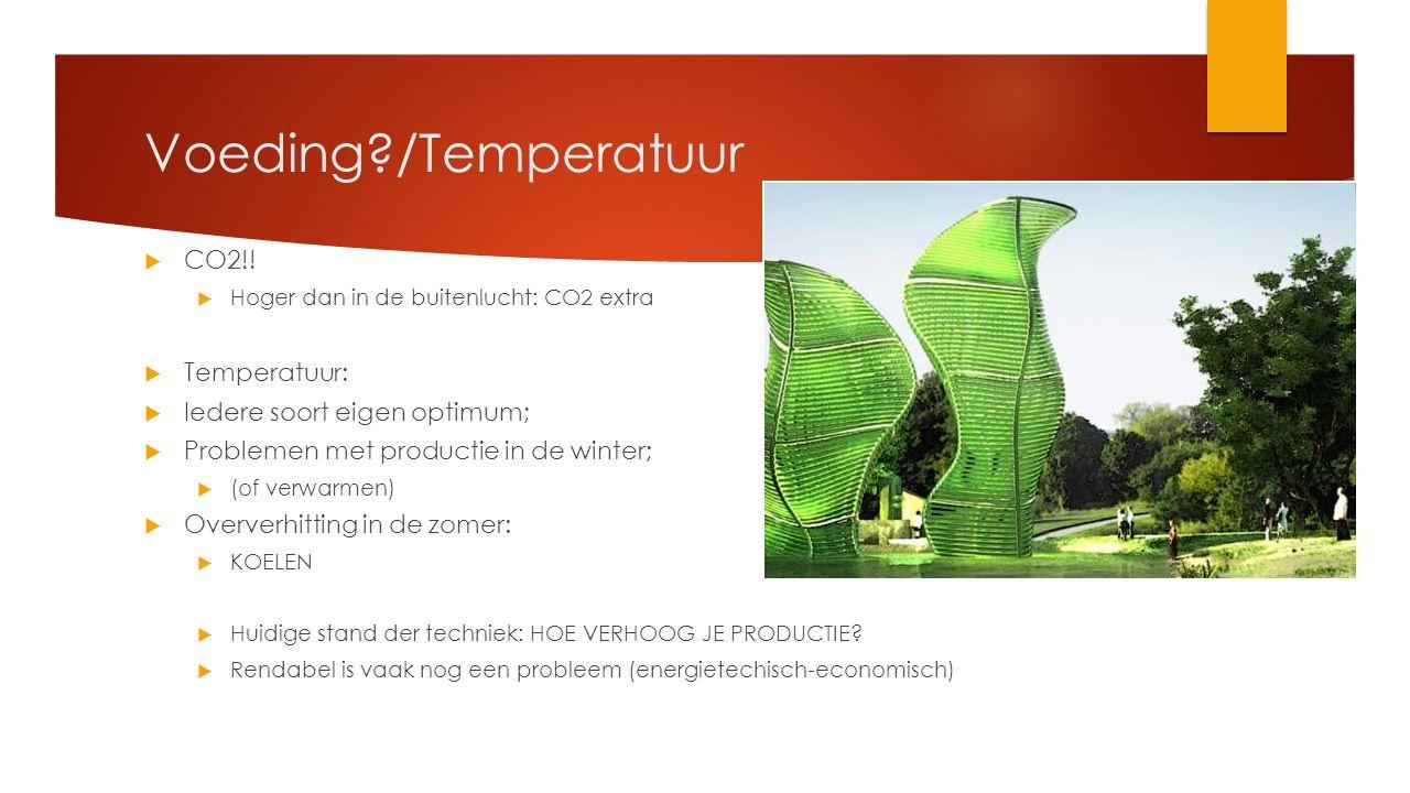 Voeding?/Temperatuur  CO2!!  Hoger dan in de buitenlucht: CO2 extra  Temperatuur:  Iedere soort eigen optimum;  Problemen met productie in de win