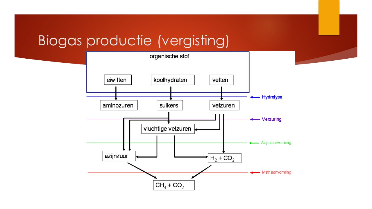  Bedenk een aantal voor en nadelen van een racebaan pond versus biokwekerijen