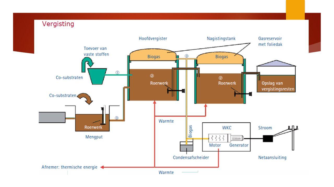 Algen als biomassa tbv energie  Lastige hobbel: algen laten zich niet zomaar in grote hoeveelheden kweken Opbrengst is omzetting van licht in bouwstenen door de alg